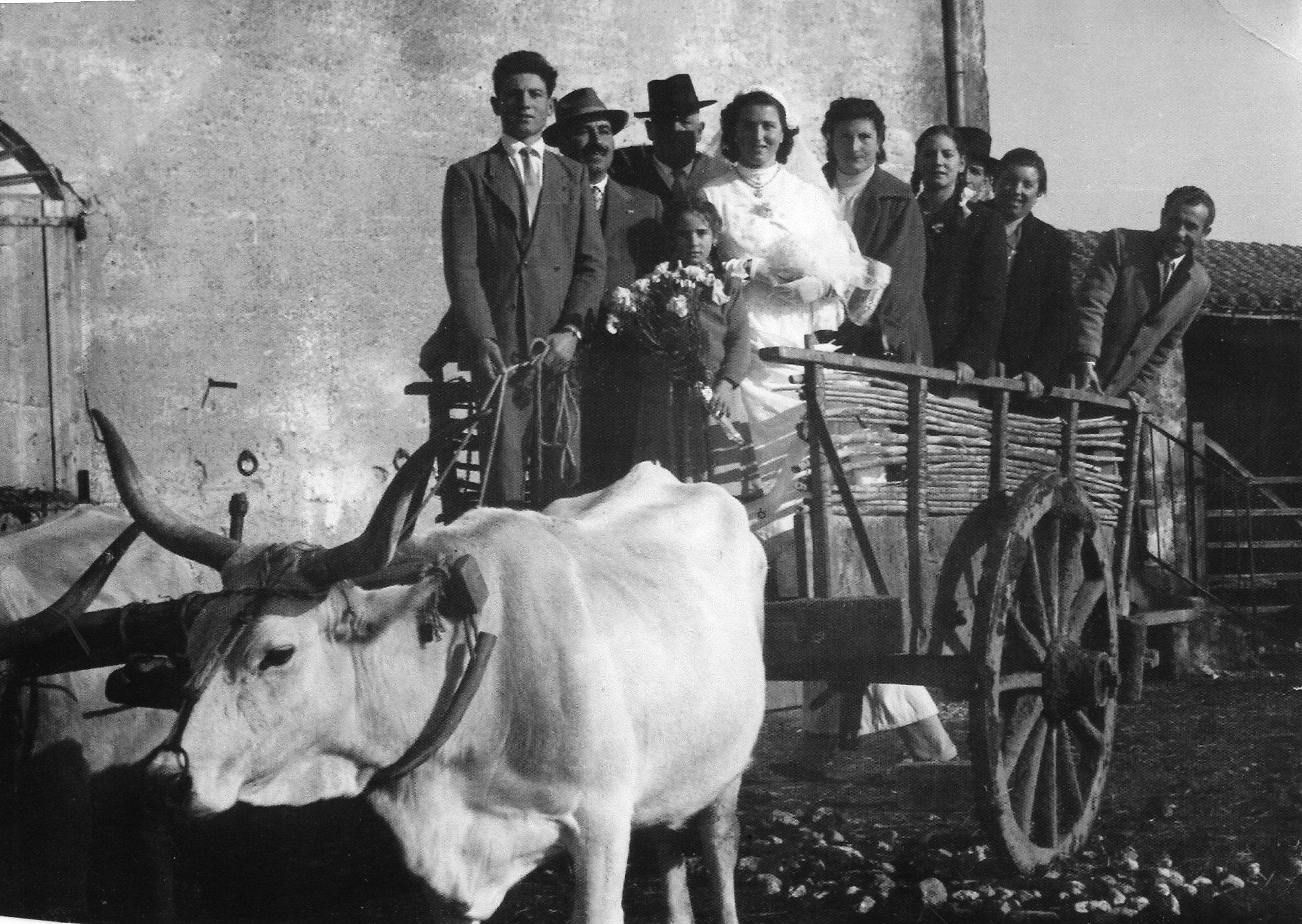 Matrimonio contadino chiamamicitta - 13 a tavola superstizione ...